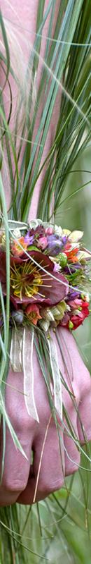 Michelle Garrett Photographer - Sidebar Image - New Images Chelsea Flower Show 2013
